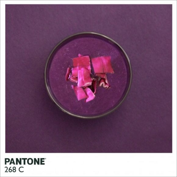 pantone site 600x600 580x580 - Farby PANTONE inak – jedlo
