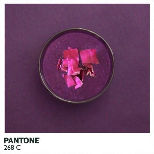 pantone site 600x600 - Farby PANTONE inak – jedlo