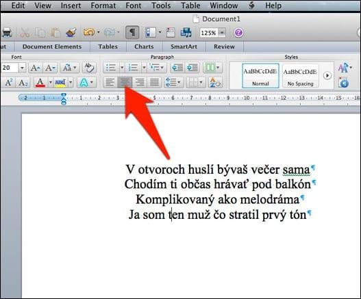 word pic2 - Oh my Word alebo ako pripraviť texty vo Worde korektne
