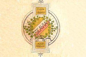 image-logo-01