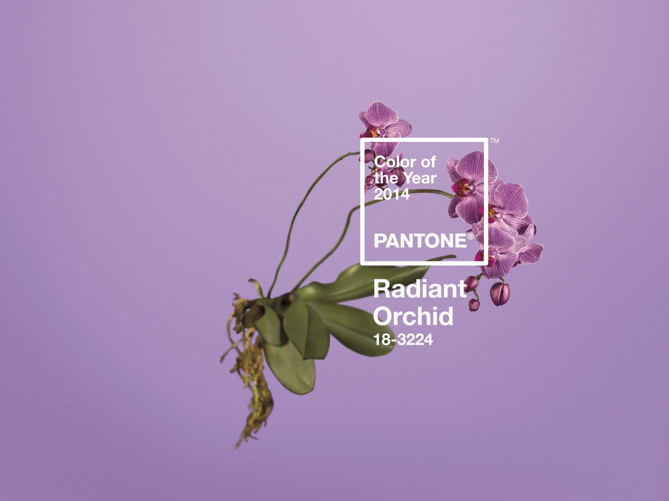 cover2 - Rok 2014 sa vyfarbil – PANTONE vybralo novú Color of The Year!