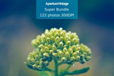 cover11 380x253 - Skvelá ponuka z Dealotto – balíček 122 fotiek s 95% zľavou!