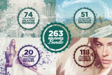 cover7 380x253 - Skvelá ponuka z Dealotto – 263 Photoshop brushov len za 11 dolárov!