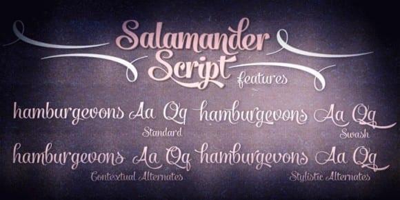 98483 580x290 - Font dňa – Salamander (zľava 20%, od 10,39€)