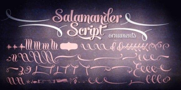 98484 580x290 - Font dňa – Salamander (zľava 20%, od 10,39€)