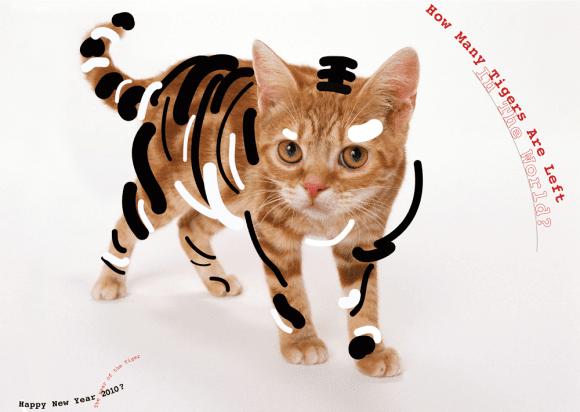 Happy New Year of the Tiger 580x412 - Ekoplagát v Žiline stále kráča ďalej