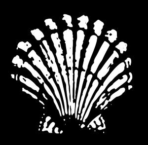 Shell_1904