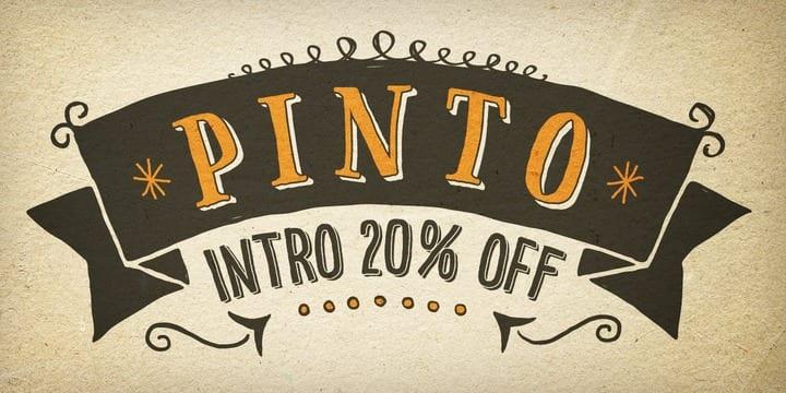 144136 - Font dňa – Pinto (zľava 20%, od 0€)