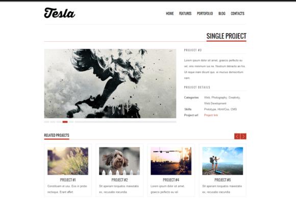 Tesla-slide3