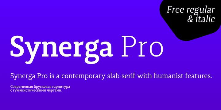 149847 - Font dňa – Synerga Pro