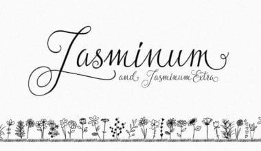 155774 380x220 - Font dňa – Jasminum