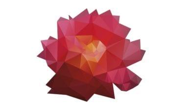 shutterstock 138843593 380x220 - Onávratnosti ruží