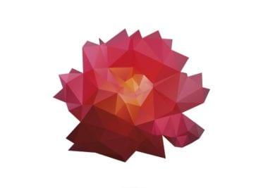 shutterstock 138843593 380x267 - Onávratnosti ruží