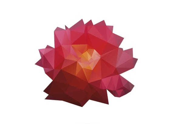 shutterstock 138843593 - Onávratnosti ruží