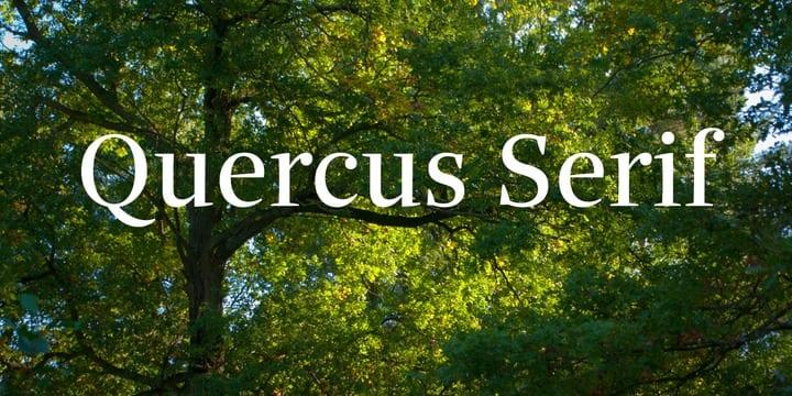 3d7918378c2b005ce0dd15602bf38884 - Font dňa – Quercus Serif (zľava 30%, od 39,89€)