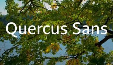 e61fd1c8054e528e22862e146c111a89 380x220 - Font dňa – Quercus Sans (zľava 30%, od 39,89€)