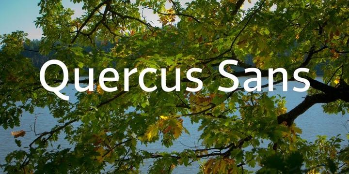 e61fd1c8054e528e22862e146c111a89 - Font dňa – Quercus Sans (zľava 30%, od 39,89€)
