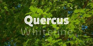e74f95eb1a17d0eb4acc8f1bea6e1f59 380x190 - Font dňa – Quercus Whiteline (zľava 30%, od 39,89€)
