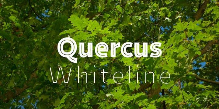e74f95eb1a17d0eb4acc8f1bea6e1f59 - Font dňa – Quercus Whiteline (zľava 30%, od 39,89€)