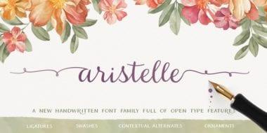 167314 380x190 - Font dňa – Aristelle (od 7,99€)
