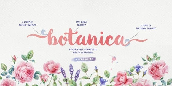 169659 580x290 - Font dňa – Botanica (od 0€, rodina 20,29€)