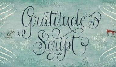 169357 380x220 - Font dňa – Gratitude Script