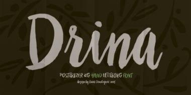 174980 380x190 - Font dňa – Drina