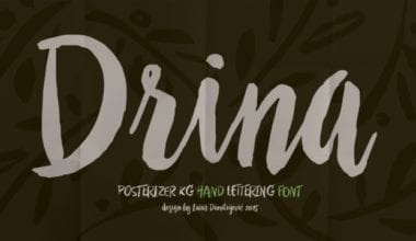 174980 380x220 - Font dňa – Drina