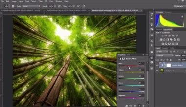 41 380x220 - Videotutorial – B&W Layer pre lepšie výsledky vo Photoshope