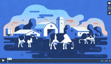 snimka obrazovky 2015 07 17 o 9.27.14 380x220 - Pohyblivá inšpirácia – Dairy Farmers Of Canada – The Milkle-Down Effect