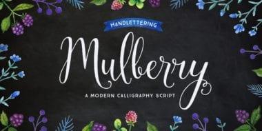 170637 380x190 - Font dňa – Mulberry Script