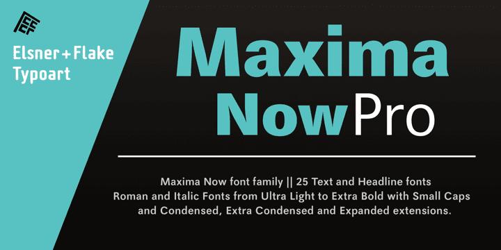 191502 - Font dňa – Maxima Now Pro