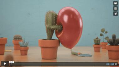snimka obrazovky 2015 11 27 o 8.56.14 380x213 - Pohyblivá inšpirácia – A Guide To Happy