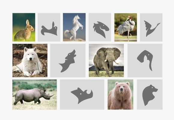 Animals-symbol-bratus-zoo-brand-identity-vietnam-design-agency