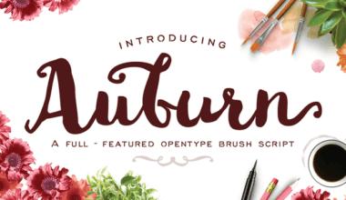 194641 380x220 - Font dňa – Auburn