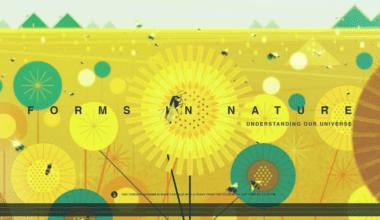forms 380x220 - Pohyblivá inšpirácia – Forms In Nature