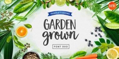203930 380x190 - Font dňa – Garden Grown