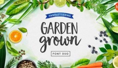 203930 380x220 - Font dňa – Garden Grown