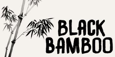 154204 380x190 - Font dňa – Black Bamboo