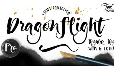 211315 380x220 - Font dňa – Dragonflight Pro