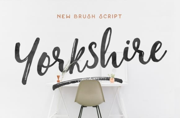 yorkshire-brush-fr