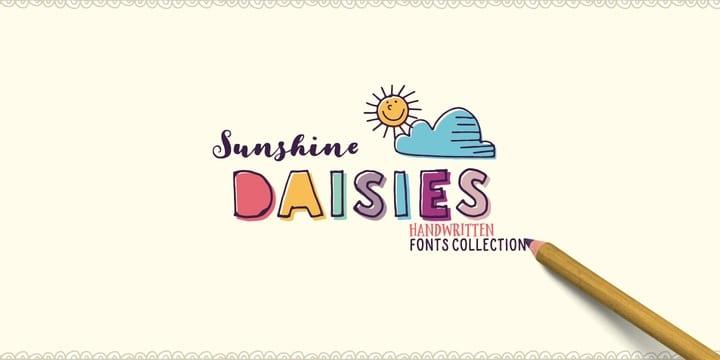 215996 - Font dňa – Sunshine Daisies