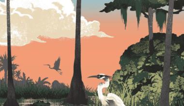 cover 4 380x220 - Printy, ktoré oslavujú americké národné parky