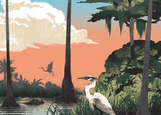 cover 4 - Printy, ktoré oslavujú americké národné parky