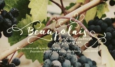 201519 380x220 - Font dňa – Beaujolais