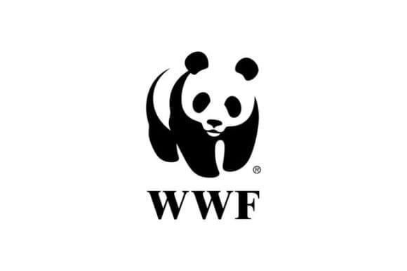 osGgCJ4T5farS89PnNzPyP 650 80 580x386 - Redizajn loga WWF: Zaujímavý koncept či slepá ulička?
