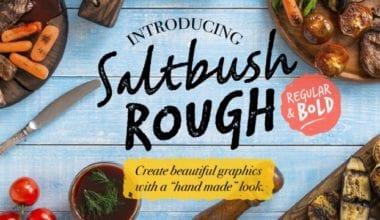 241858 380x220 - Font dňa – Saltbush Rough