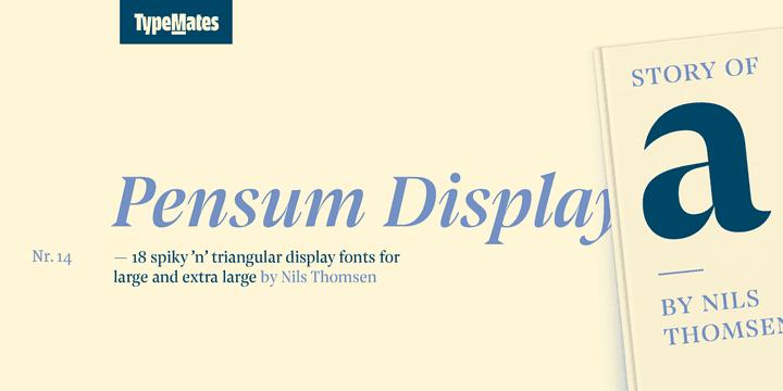245580 - Font dňa – Pensum Display