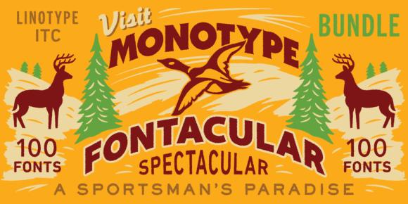 247361 580x290 - Font dňa – Monotype Fontacular Bundle