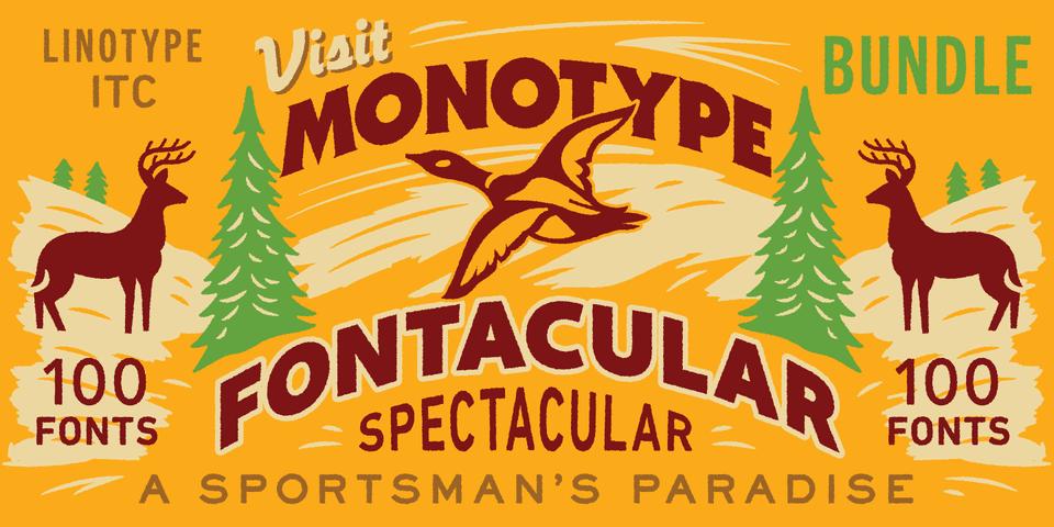 247361 - Font dňa – Monotype Fontacular Bundle